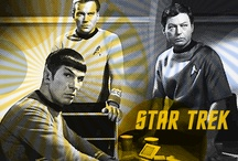 STAR TREK / Space: the final frontier.