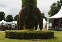 3D Planting / Gardening in 3D!  Adventurous 3D gardening - different shapes and sculptures made from growing plants!