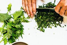 cooking fresh herbs