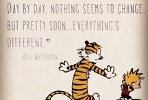 The Wonderful World of Calvin and Hobbes / Calvin and Hobbes wisdom and quotes
