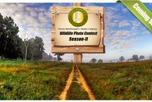 Wildlife Photo Contest Season II / Pugdundee Safaris presents - Wildlife Photo Contest Season II.The much awaited Photo Contest is back and is live. The winner of the contest will avail a bumper prize. Show your photography skills and claim yourself a victory spot.