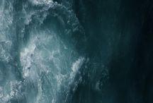Untamed Ocean