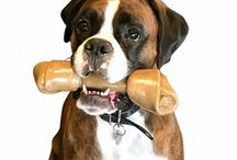 Nylon Rawhide / A Rawhide but not Rawhide? Pet Qwerks Rawhide Style BarkBone® is a healthy alternative for pups that love to chew & love Rawhide. It's a Rawhide without the bad stuff on it, no chemicals. Massive solid FDA compliant, USA sourced nylon & bacon.  Long lasting Rawhide!