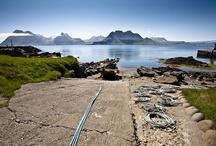 Westfjords nature