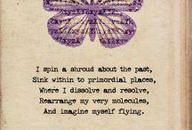 Butterflies - transformation