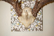 antlers / antler fancifying | pretty antlers