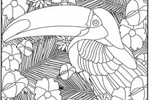 Adult Coloring Pages / by Rita Monk