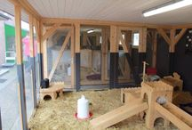 Rabbit Abode & Enrichment Inspiration / by Holly M