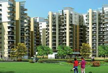 Pareena Sector 68 / Today, where property value in Gurgaon is rising at a rapid pace, Pareena Group has come forth with their new stylish and ultra-modern affordable housing project at Sector 68, Gurgaon, on the stretch of Sohna Road. Pareena New Project Sector-68, Gurgaon truly brings relief to the real estate investors and home seekers.