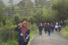 tour ke kebun teh, pucak / jalan-jalan puncak