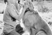 crazy dog lady / ♥♥