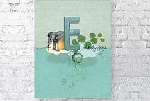 I <3 Elephants! / by Katy Patrick