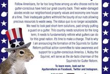 Squirrels for Gutter Reform / Nutsy the Squirrel has formed a political action committee titled Squirrels for Gutter Reform to raise awareness and support for a gutter-conscience America! / by Englert LeafGuard