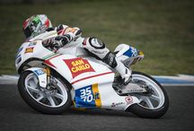 Moto 3 Championship / Our riders in the 2015 Moto3 Championship