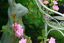 Backyard garden / by Joan Kosmachuk