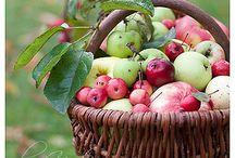 Fruits / by İlknur Gündoğmuş