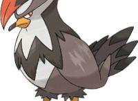 pokemon tipo voador