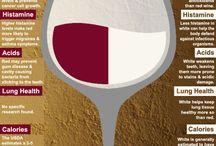 Vinhos/ Wine