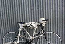 Bikes - all types