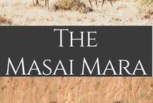 East Africa Travel: Kenya