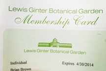 Membership at Lewis Ginter Botanical Garden