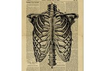 Vintage Posters Newspaper Dictionary Art