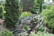 сад игоря успенского