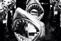 Ring / Shark ring