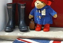 Bear: Padington