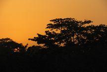 Tanmog photography / fotografía