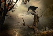 Samhain / by Rebecca Price