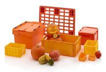 AUER Packaging Seasonal