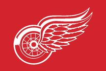 Sports Teams - RedWings / by Amy Below Stuczynski