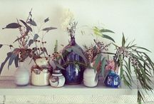 I'm obsessed with plants