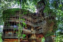 #Treehouses / #treehouse #accommodation