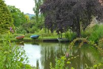 Boating at Batcombe Vale / The boating lake adjacent the campsite has four colourful rowing boats for campers to enjoy for free. Try your hand at rowing for the first time, glide around the lake, or simply relax on the water and enjoy the tranquility of floating along with the ducks.