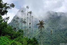 Colombia / Fotos de mi viaje por Colombia. Naturaleza, ciudades, playas, gastronomía y mucho más.
