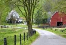 Farmhouses / These homes remind me of my 1903 farmhouse that I get the pleasure of living in!  Some are smaller and some are much bigger but all are examples of simple beauty.   / by Janelle@The Peaceful Haven