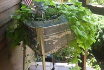 old wash tub garden