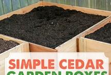 garden info