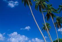 I <3 Samoa