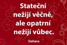 citáty ;)