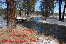 Happy Holidays from the Land Trust.