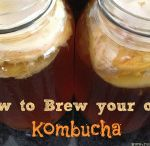 Kombucha & other Yummy Fermented Drinks