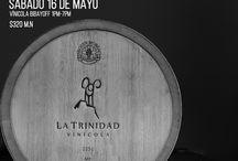 Fiesta de los viñedos en flor / Degustación de nuestros vinos Fauno, Minotauro y Afrodita en los viñedo Bibayoff