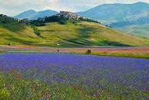 Nostro paese / Alcune delle bellezze d'italia