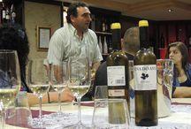 Viña do Avó / Cata de vinos de la Bodega Sameirás