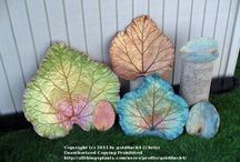 Leaf projects