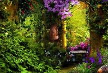 In The Garden / by Linda Schmidt