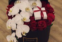 Flower BOXY